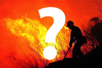 Find out where was that picture used.